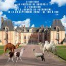 Dromadaires et calidées au château Grosbois, 19 et 20 septembre
